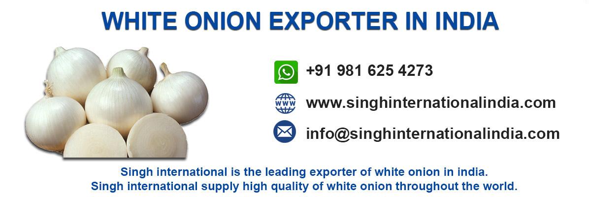white-onion-exporter