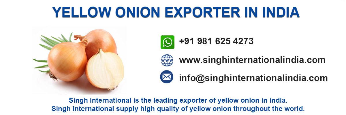 yellow-onion-exporter